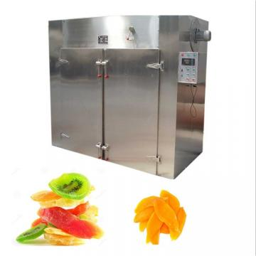Stainless Steel Conveyor System for Fruit Washing and Drying Machine