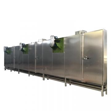 Vacuum Dryer for Fruit and Vegetables Like for Kiwi