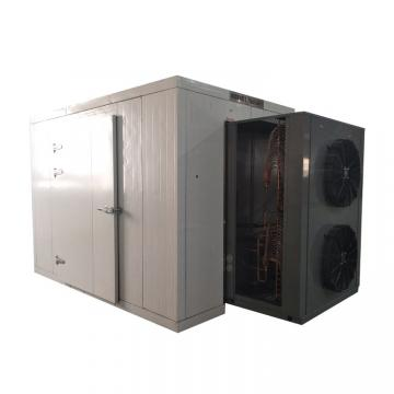 Vacuum Drying Equipment for Fruits and Vegetables Dehydration Machines